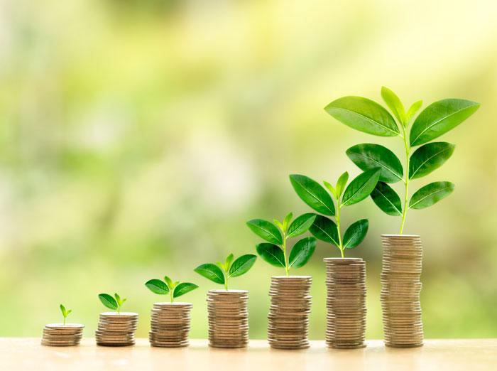 Seguros de vida y planes de pensiones. Elige el plan perfecto