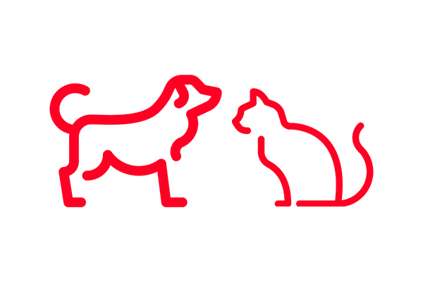 Servicios para mascotas de Seguros Bilbao